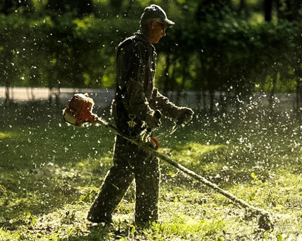 итальянском картинки про газонокосильщика самом деле