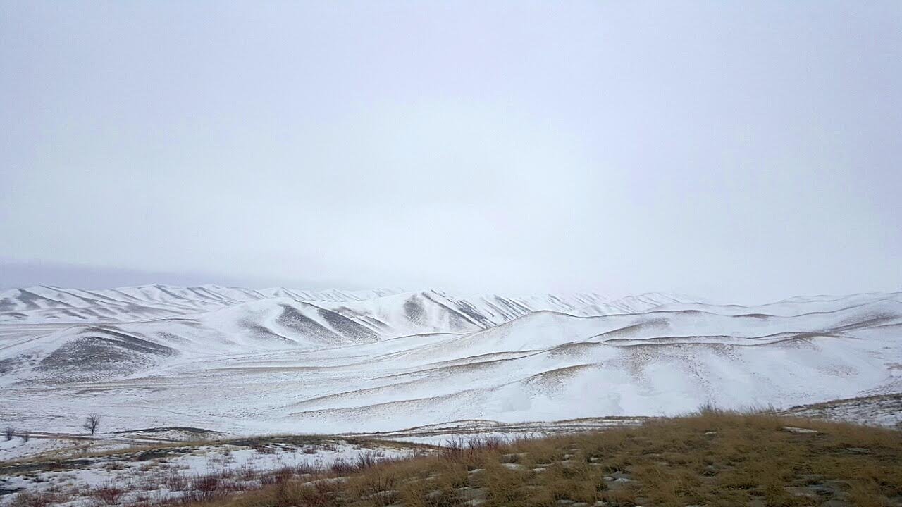 Айтуарская степь. Фото: Рафиля Бакирова