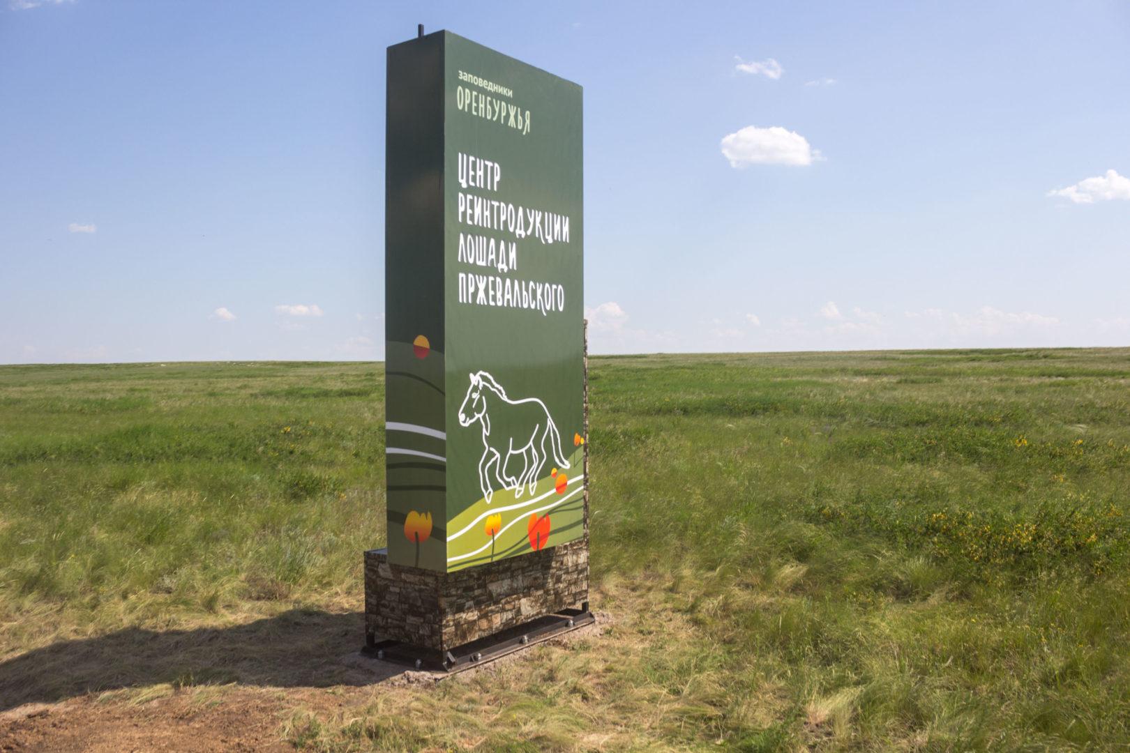 3-я партия лошадей Пржевальского прибыла вОренбург врамках реализации необычайного проекта