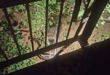 «Nissan Pathfinder» слетел с моста: трое пострадавших
