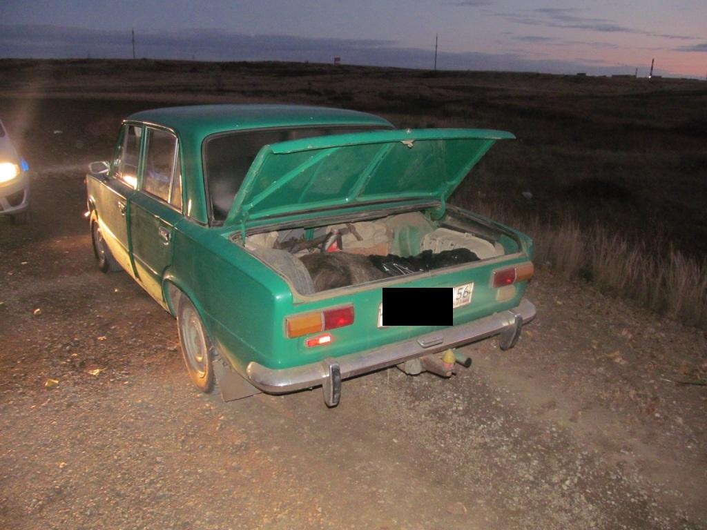 Полицейские вОренбургской области задержали браконьера стушей кабана
