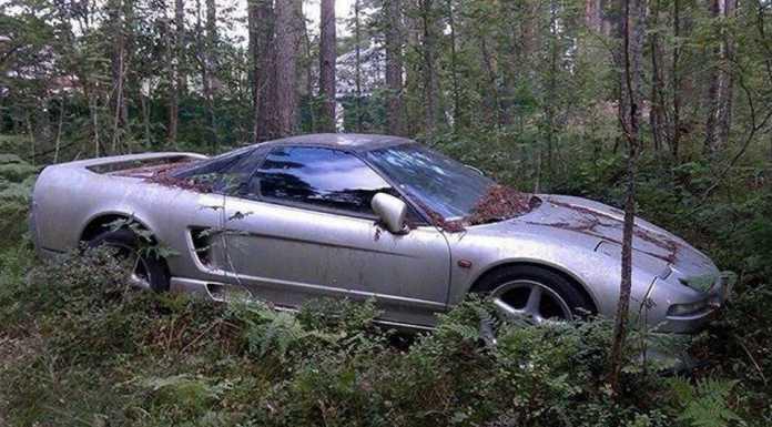 В лесу под Петербургом обнаружили поросший мхом спорткар