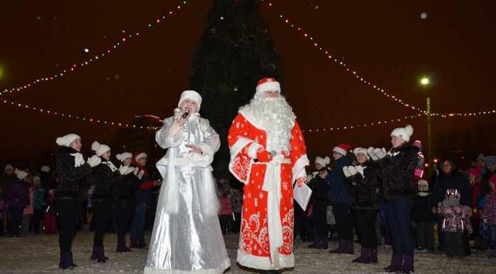 Для жителей 17 округа прошло открытие праздничной елки