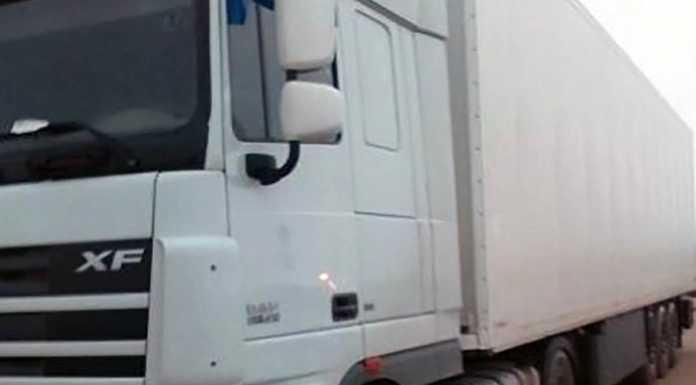 В Оренбуржье пытались незаконно ввезти 56,7 тонн субпродуктов говяжьих