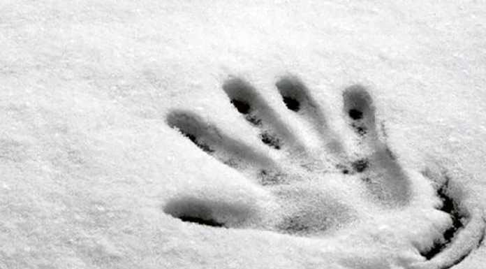 Снег рука холод зима