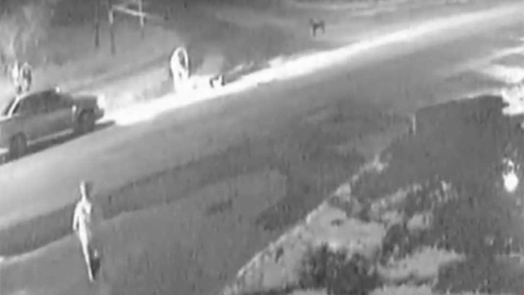 Водитель заплатит 50 тысяч рублей за сбитого пешехода