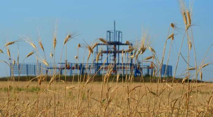 """Совет директоров """"Газпром нефти"""" рассмотрел вопрос о перспективах развития Оренбургского нефтедобывающего кластера"""