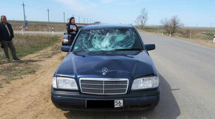 Водитель «Мерседеса» сбил 16-летнего пешехода