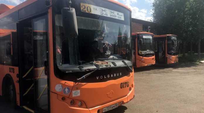 Общественный транспорт, автобус