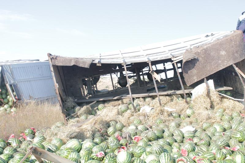 В Адамовском районе фура с арбузами слетела в кювет