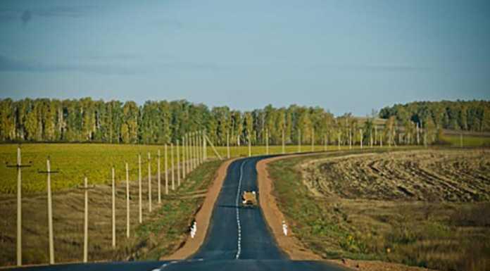 Юрий Берг поздравил жителей Тюльганского района с открытием новой дороги