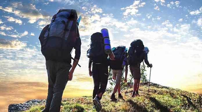 Туризм Турист Путешественник
