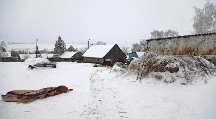 Тело новорожденного мальчика с остатком пуповины найдено на улице
