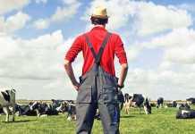 Фермер молодой