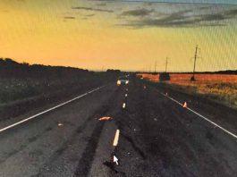 На трассе Оренбург - Самара водитель насмерть сбил пешехода