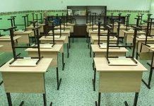 Школа канинкулы ученики